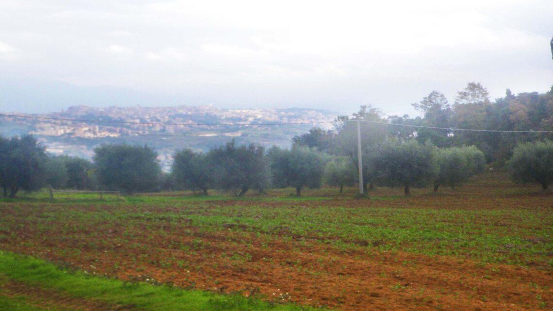 Monte Malbe e discesa a Chiugiana
